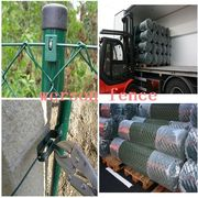 Chain link fence/pvc coated chain link fence for sale