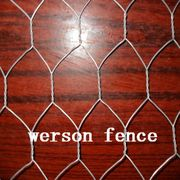 Hexagonal wire netting/chicken wire /poultry netting for sale