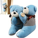 pair bear plush classic toys