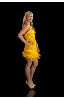 Flapper Dresses and Dancing Outfil Supplier